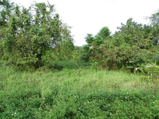 1/4 Acre Plot in Kilifi